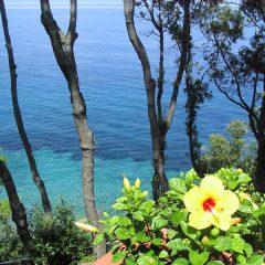 Intur Residence Isola d'Elba – Toscana