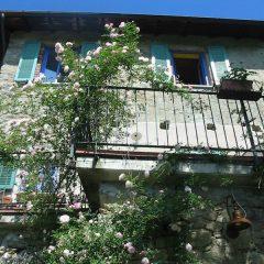 Agriturismo Saudon – Toscana