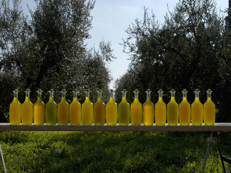 Masseria Bosco Pontoni – Molise
