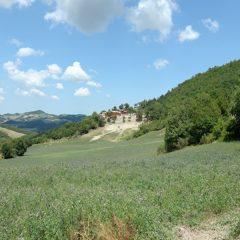 Il Baciarino – Toscana