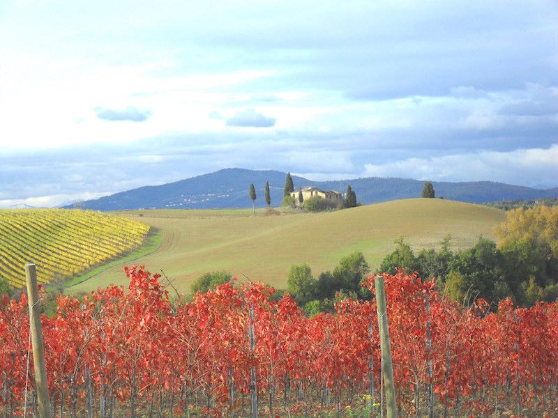 Chianti b&b Firenze – Toscana