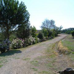 Agriturismo Galeazzi – Toscana