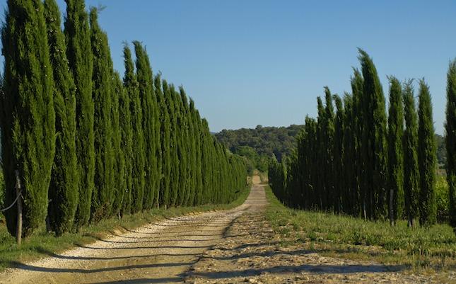 Il Poggiarello - Toscana
