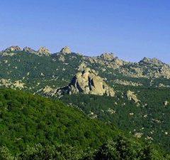 Foresta Sette Fratelli – Sardegna