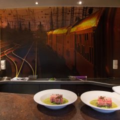 Olanda: tour in treno con cena panoramica