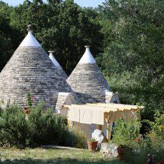 Trova il tuo albero ai Trulli del bosco – Puglia