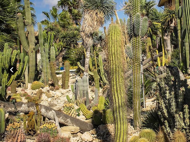 Relais Garden Cactus B&B – Sicilia