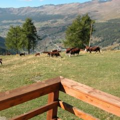 Hotel Cré Forné – Valle d'Aosta