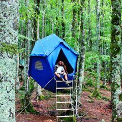 Basta un Atomo, e la tenda è sull'albero