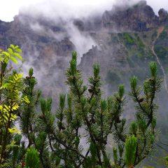 Trekking dei poeti viandanti in Val di Zoldo