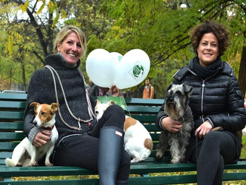 area cani parco sempione
