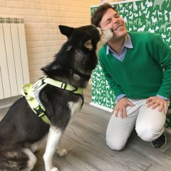 Un Bistrot per cani a Milano