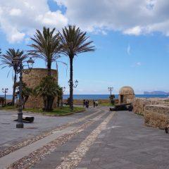 Lungo la retta via: viaggio nella Sardegna dove la sostenibilità è donna (1)