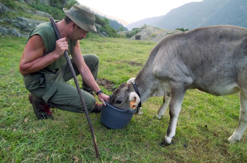 Estate: pronti a imparare in Valtellina?