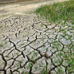 12 anni per limitare il riscaldamento globale