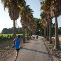 I 7 vantaggi della mezza maratona tra le vigne del Negroamaro