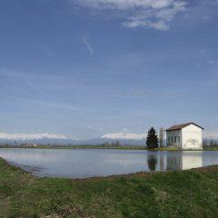 Il riso ecosostenibile (e buono) della Cascina Oschiena