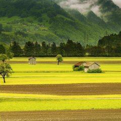 Perché fare turismo ecosostenibile